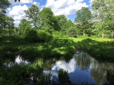 Wausaukee Residential Lots & Land For Sale: Lt 42 Crystal Rapids Rd