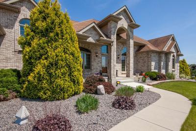 Racine County Single Family Home For Sale: 325 Wellington Dr