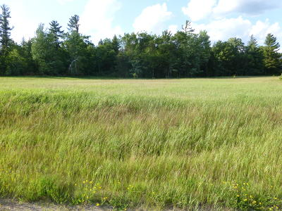 Menominee County, Marinette County Residential Lots & Land For Sale: Lt7 N Three Rivers Rd