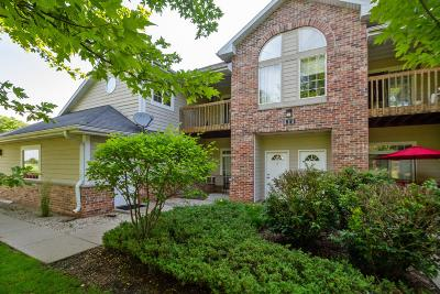 Delavan Condo/Townhouse Active Contingent With Offer: 529 Lawson School Rd #6