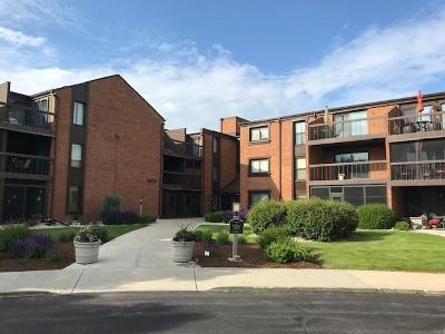 Greenfield Condo/Townhouse Active Contingent With Offer: 6100 W Stonehedge Dr #366