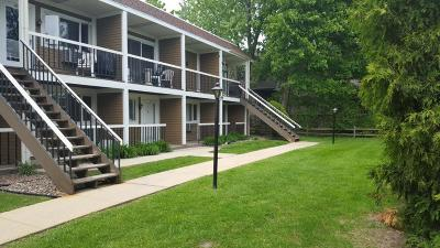 Racine County Condo/Townhouse Active Contingent With Offer: 2501 S Browns Lake Dr #A-4