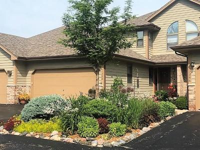 Kenosha Condo/Townhouse Active Contingent With Offer: 1328 30th Ct #13C