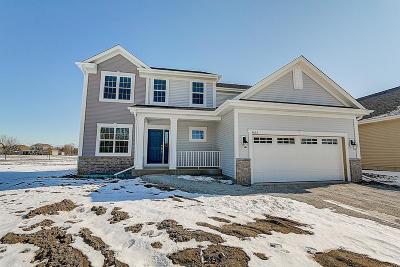 Racine Single Family Home For Sale: 4633 Sina Ln #Lt49