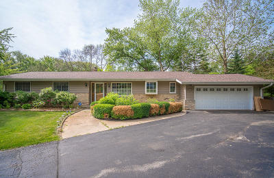 Brookfield Single Family Home For Sale: 18535 Bonnie Ln