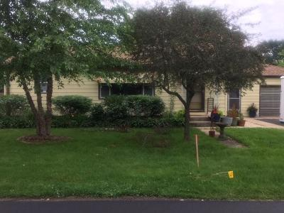 Eagle Single Family Home Active Contingent With Offer: 126 E East Ave