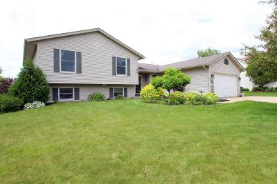 Lake Mills Single Family Home Active Contingent With Offer: 287 Ridgeview Dr