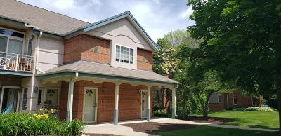 Brookfield Condo/Townhouse Active Contingent With Offer: 18950 Toldt Woods Dr #19