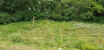 Whitewater Residential Lots & Land For Sale: Lt7 Blue Heron Hills