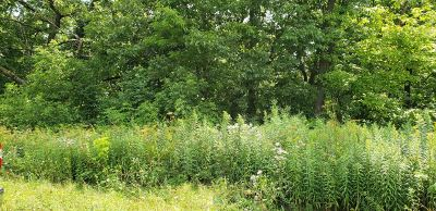 Whitewater Residential Lots & Land For Sale: Lt14 Blue Heron Hills