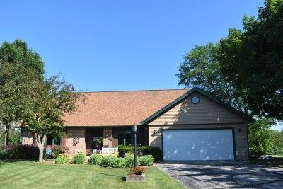 Single Family Home Active Contingent With Offer: W267s8010 Stoney Point Ct