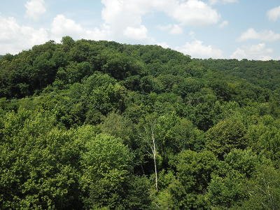 Ettrick Residential Lots & Land For Sale: 0 Sather Ln
