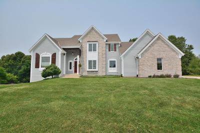 Oconomowoc Single Family Home For Sale: 317 River Bluff Cir