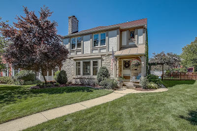 Single Family Home Active Contingent With Offer: 9018 Jackson Park Blvd