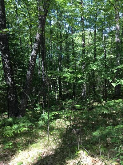 Menominee County, Marinette County Residential Lots & Land For Sale: Lt 14 Witt St.