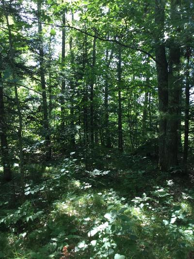 Menominee County, Marinette County Residential Lots & Land For Sale: Lt. 10 Witt St.