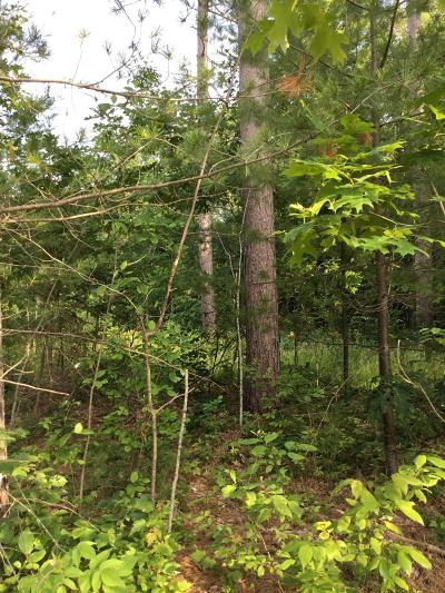 Menominee County, Marinette County Residential Lots & Land For Sale: Lt. 9 Witt St