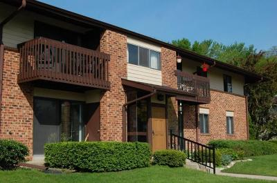 Pewaukee Condo/Townhouse For Sale: 307 Park Hill Dr #H
