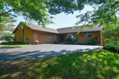 Wales Single Family Home For Sale: 527 Gwilym Ct