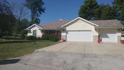 Milwaukee County Single Family Home Active Contingent With Offer: 9356 S Regency Dr