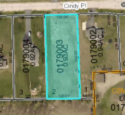 Residential Lots & Land For Sale: Lot 2 Cindy Pl
