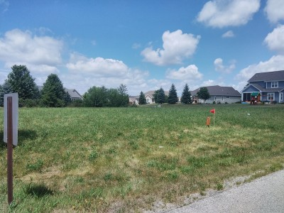 Muskego Residential Lots & Land For Sale: Lot 17 Boxhorn Reserve
