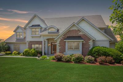 Racine County Single Family Home For Sale: 6216 Stefanie Way