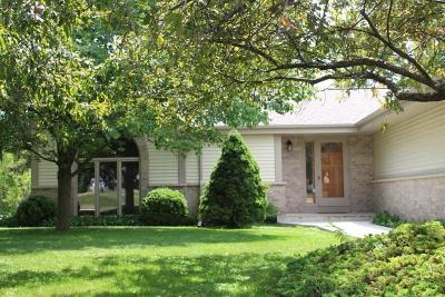 Milwaukee County Single Family Home For Sale: 917 E Puetz Rd