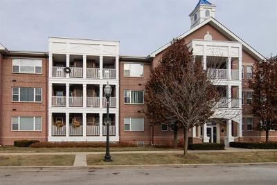 Kenosha Condo/Townhouse Active Contingent With Offer: 418 56th St #202