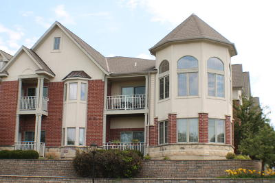 Brookfield Condo/Townhouse Active Contingent With Offer: 17490 Crest Hill Dr #16