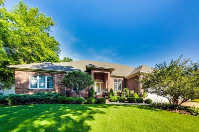 Lake Geneva Single Family Home Active Contingent With Offer: 1530 Ryder Cup Rd
