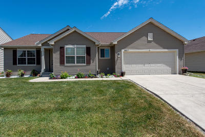 Kenosha Single Family Home Active Contingent With Offer: 6417 93rd Ave.