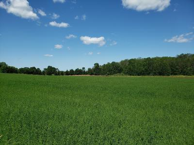 Plymouth Residential Lots & Land For Sale: 9.04 Acres County Road Oj