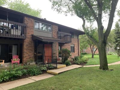 Pewaukee Condo/Townhouse For Sale: 360 Park Hill #H