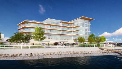 Port Washington Condo/Townhouse For Sale: 324 N Lake St #201