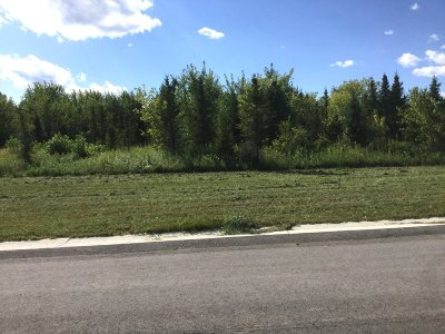 Watertown Residential Lots & Land For Sale: Lt1 Pleasant Heights Cir