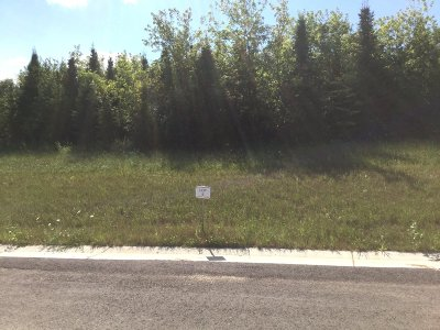 Watertown Residential Lots & Land For Sale: Lt5 Pleasant Heights Cir