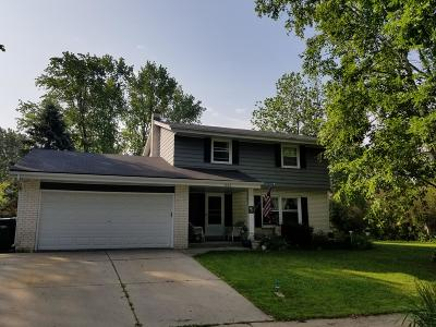Single Family Home For Sale: 1522 Park View Ln
