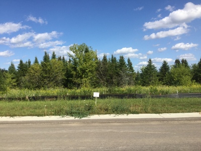 Watertown Residential Lots & Land For Sale: Lt9 Pleasant Heights Cir
