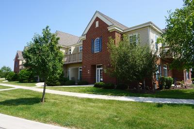 Oak Creek Condo/Townhouse Active Contingent With Offer: 2575 W Colonial Woods Dr
