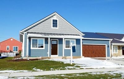 Port Washington Single Family Home For Sale: 1822 Farm View Dr