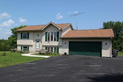 Elkhorn Single Family Home For Sale: W6022 Mariner Hills Trl