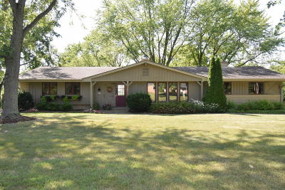 Racine County Single Family Home For Sale: 6228 Town Line Rd
