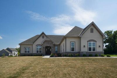 Menomonee Falls Single Family Home Active Contingent With Offer: W194n5798 Deer Park Ct