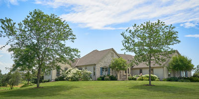 Washington County Single Family Home Active Contingent With Offer: 841 Skibbereen Way