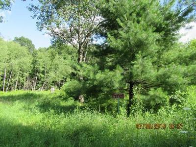 Wausaukee Residential Lots & Land For Sale: N9224 Ellis Ln