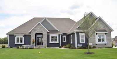 Menomonee Falls Single Family Home For Sale: N65w15789 Fox Meadow Dr