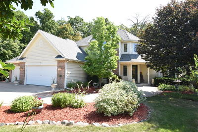Racine County Single Family Home For Sale: 5339 Rossi Ln