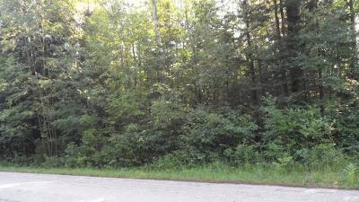 Wausaukee Residential Lots & Land Active Contingent With Offer: 37.8 Acres Trudgion Rd