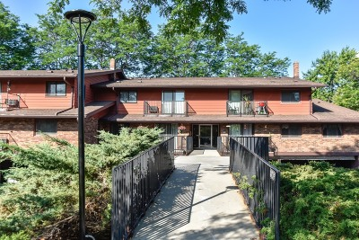 Greenfield Condo/Townhouse For Sale: 8565 W Waterford Ave #1